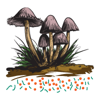 Pictograph - Mushroom