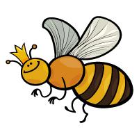 Animal - Bee