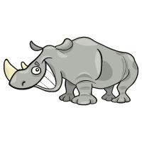 Animal - Rhino