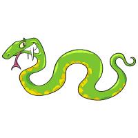 Animal - Viper