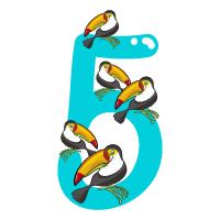 Number 5 - Color