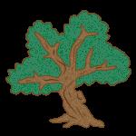 Tree - Medium