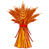 Fall - Wheat