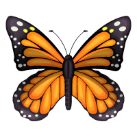 Pictograph - Adult Butterfly
