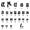 Human Male Karyotype