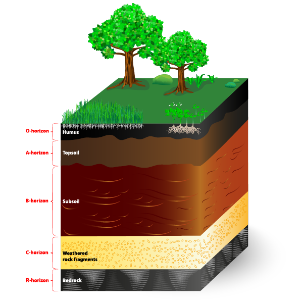 Soil Layers With Text Labels