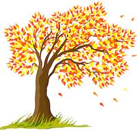 Fall - Tree