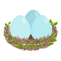Spring - Nest