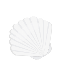 Summer - Sea Shell
